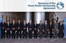 TPP-Summary-splash