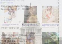 backpage-senate