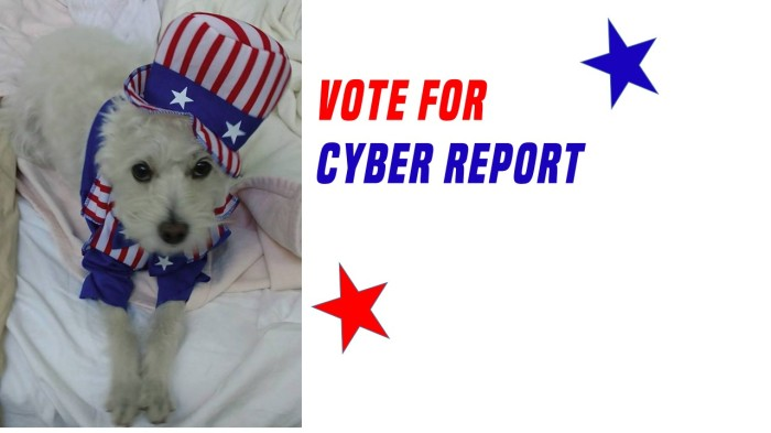 cyber report nom1